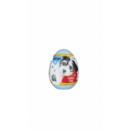 Dog surprise egg